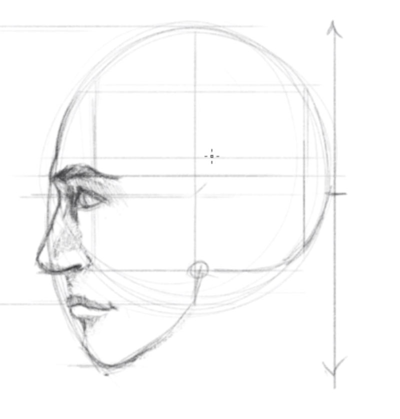 How to draw a face profile view - step - 5 - Draw the Facial Features and Add Shading