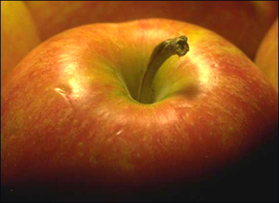Close up picture of apple. The pectin in apples work wonders on high cholesterol.